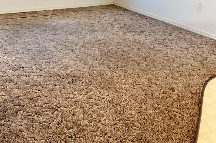 Carpet — After